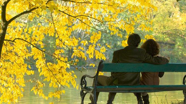 couple_parc_automne_banc_sn635
